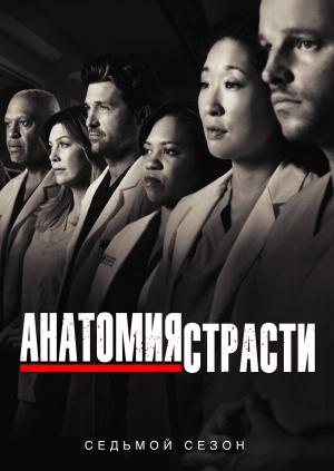 Анатомия страсти (Сезон 7)